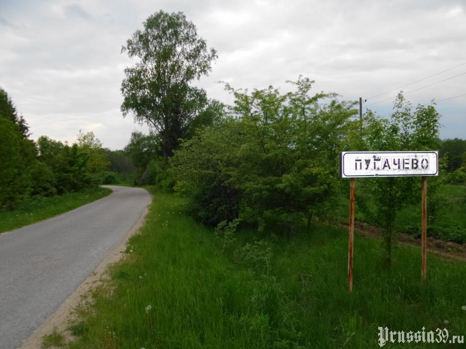 поселок пугачево фото